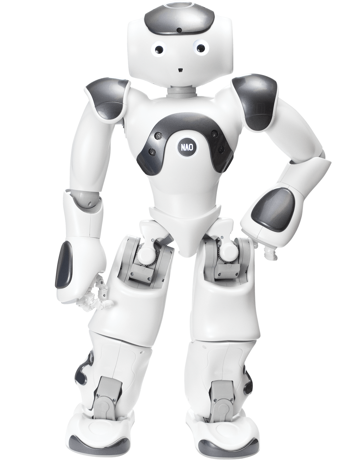 NAO the humanoid and programmable robot | SoftBank Robotics